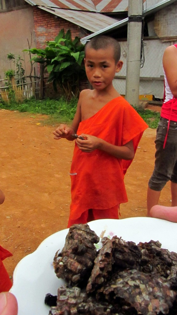 Little monks offering us some nice fresh worms in Laos